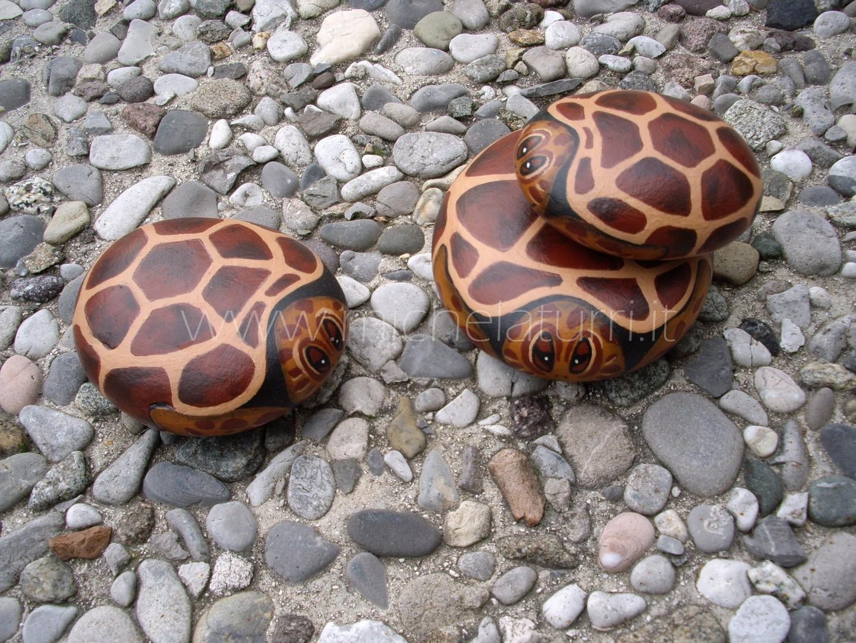 Animali michela arte design for Sassi per tartarughe